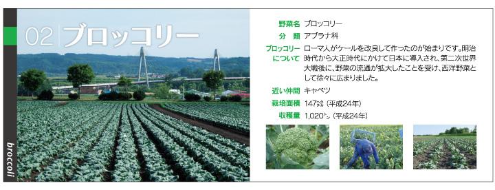 yasai1_02