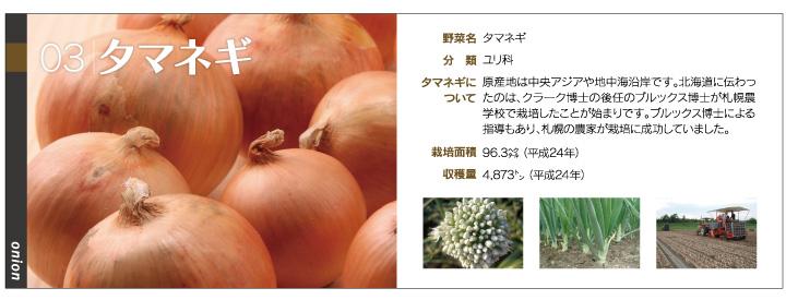 yasai1_03