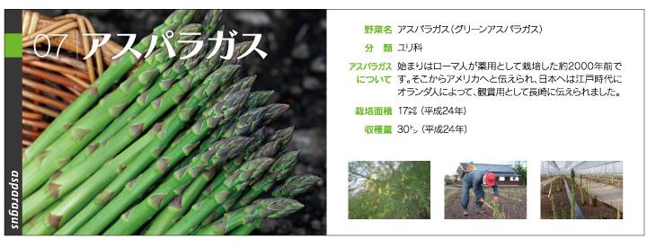 yasai1_07