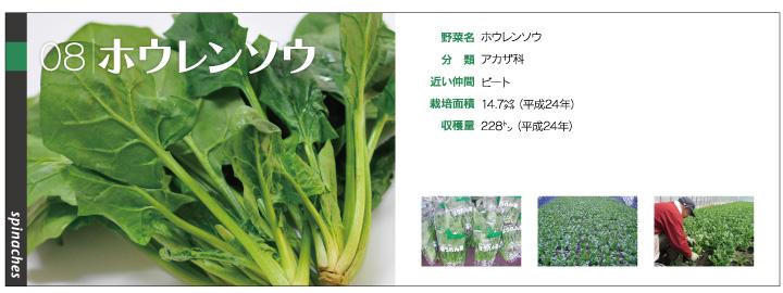 yasai1_08